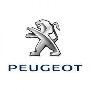 Ремонт замка зажигания автомобиля Peugeot