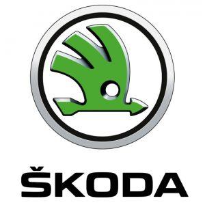 Ремонт замка зажигания автомобиля Skoda